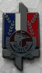 1 GTCAT PINS-2