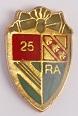 25 RA PINS-2