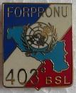403 BSL PINS-2
