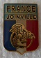 JOINVILLE PINS-2